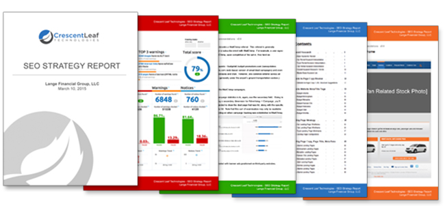 SEO Strategy Report
